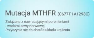 mutacja_MTHFR